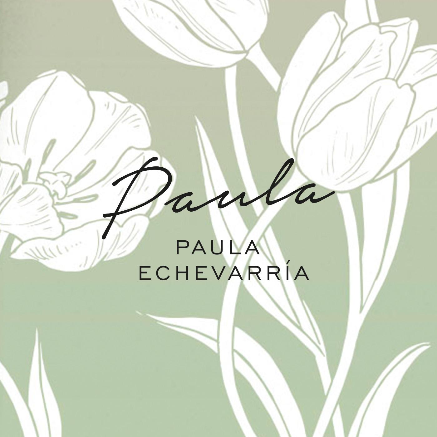 Proyecto Paula Echevarría Fragancias ProjectROOM